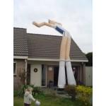 Fly Guy 9 meter